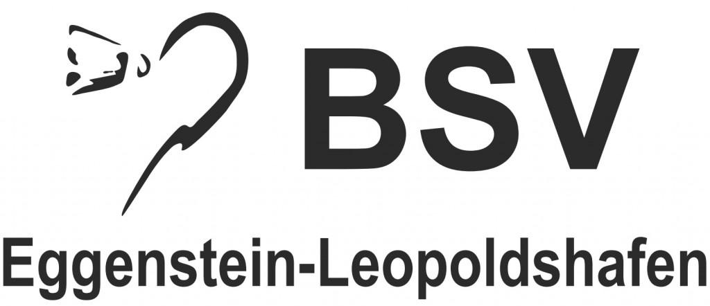 BSVSchriftzug